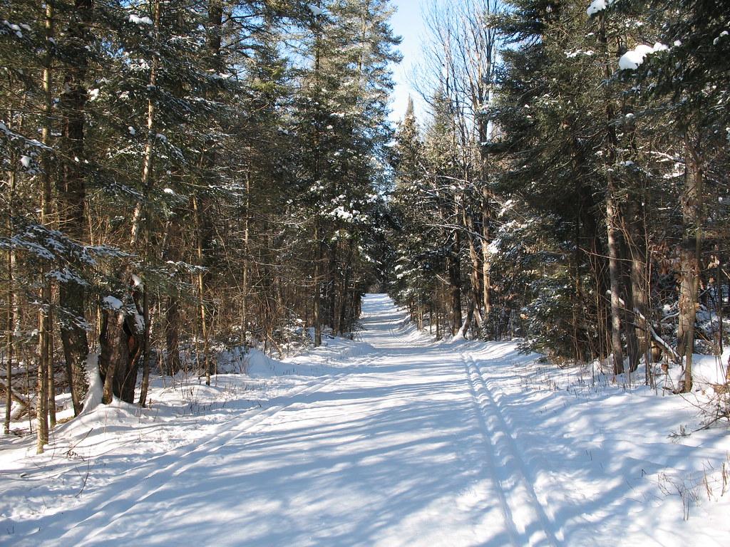 GAT trail