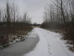 indian creek WA