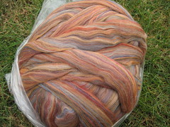 Ashland Bay multi merino in Sandalwood