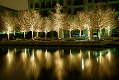 On Golden Pond (Wade Griffith) Tags: longexposure trees reflection water car night gold lights texas explore plano 10seconds 100iso nikonstunninggallery nikond80 legacytowncenter assignmentdfw1 utata:project=uplandscape utata:displaysize=medium wadegriffith2010