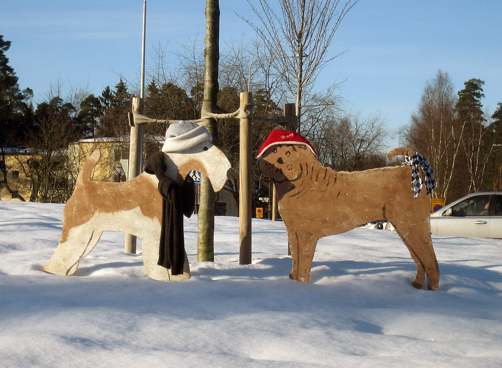 Dogs Dressed for Winter