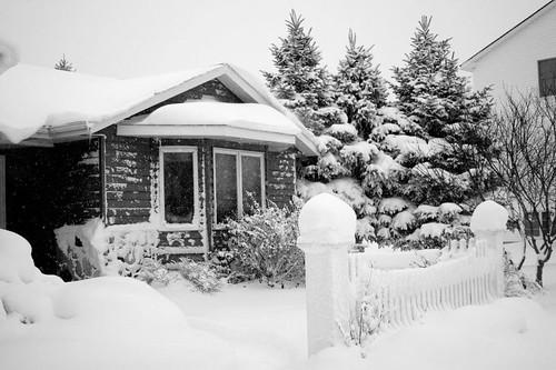 blizzard 019 copy