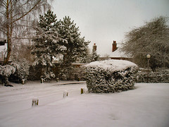 Hertford Snow Day 08-02-07 003