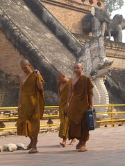 Novice Monks at Wat Chedi Luang in Chiang Mai