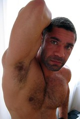 BearMugs352 (dannybehr) Tags: bear hairy man pits armpits maleunderamrs