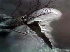 18-02-07_1435 (dr_sponge) Tags: cameraphone winter snow ice vnern lowres vrmland