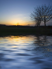 flood (myfear) Tags: blue reflection tree water yellow photoshop mirror waves sundown outstandingshots impressedbeauty superbmasterpiece beyondexcellence