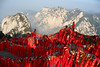Prayers on the Hua Shan (Ingiro) Tags: china mountain tree interestingness prayer cina huashan ingiro interestingness94 i500