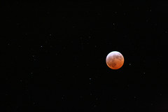 Eclipse 2007 Moon and Stars (Bay M) Tags: moon eclipse top20moonshots 2007 richardwisbey