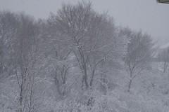 Off my deck (ArmchairDeity) Tags: winter minnesota march burnsville