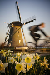 Dutch Scenery (siebe ) Tags: flower holland mill netherlands windmill dutch bicycle boat movement nederland x explore daffodil molen narcis fiets beweging watermolen 1717 oudewetering degoogermolen hollandsiebe hollandstock