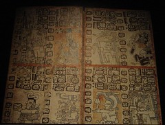 Aztec Chocolate Hieroglyphics (Swamibu) Tags: museum germany god aztec chocolate drinking cologne cocoa hieroglyphics abigfave superbmasterpiece