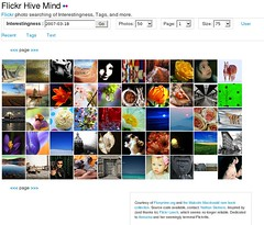 Flickr Hive Mind (nosha) Tags: flickr web www mining software tool hivemind datamining flickrtools