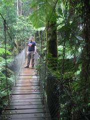 Ciaran on the treetops walk