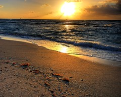 Early in the mornin' (iceman9294) Tags: ocean morning clouds sunrise sand nikon bravo miami horizon minimal professional miamibeach chriscoleman naturesfinest supershot d80 outstandingshots nikonstunninggallery abigfave impressedbeauty superaplus aplusphoto superhearts bloggedbyabigfave iceman9294 christopherturnerphotography
