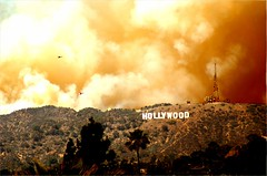 Hollywood Fire