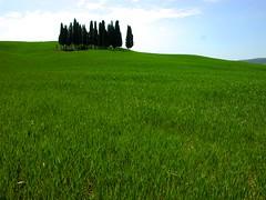 Toscana - tra Torrenieri e S. Quirico d