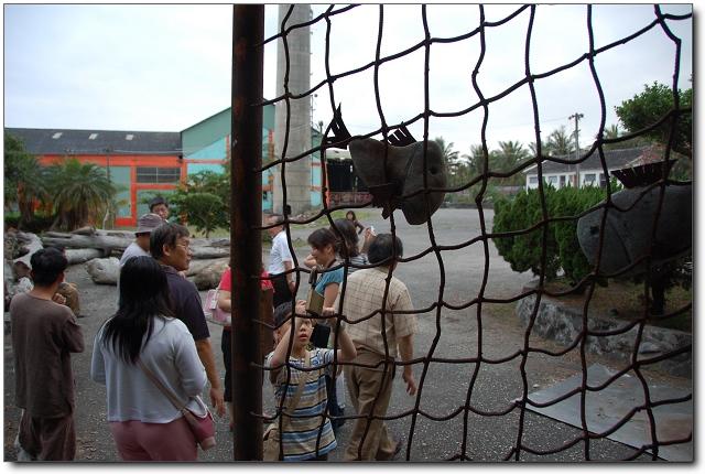 都蘭糖廠藝術村-06