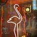 Neon Flamingo, August 1986