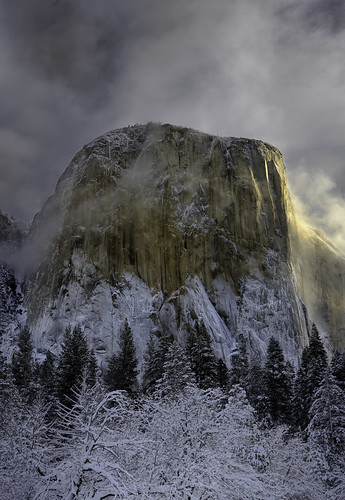 Photo of the Day: El Capitan by Brad Moore