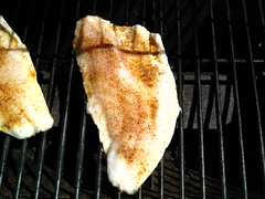 Walleye fillet on the grill