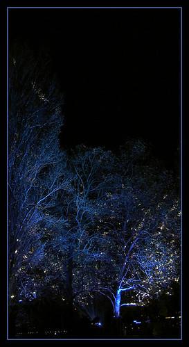 11_2005_lights