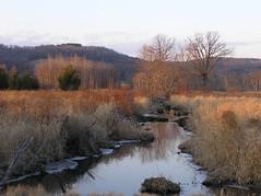 Field & Stream (mudder_bbc) Tags: sunset newyork field landscapes stream columbiacounty roeliffjansenkill roejancreek