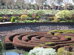 Maze Garden (feministjulie) Tags: english gardens museum losangeles getty maze grounds hedges