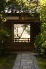 玄関奥の庭園