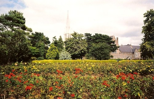 Rose Gardens of Tralee, Ireland