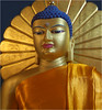 International Buddhist Directory