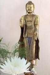 standing buddha .jpg