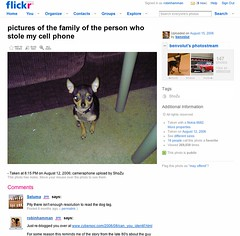 Stolen Camera Phone Becomes a Blog Sensation