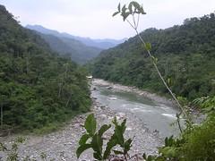 Ecoturismo comunidad indígena chamanes Kichwa selva pluvial Amazonia Tena Ecuador