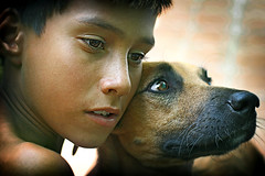 Its a dogs life... (carf) Tags: poverty boy brazil dog boys brasil kids youth puppy children hope kid community education support friend child risk friendship culture esperana social impoverished underprivileged altruism educational development prevention cristian cultural atrisk flickrsbest mundouno pituxa