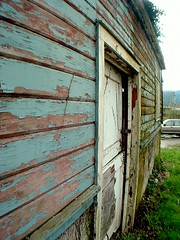 paint job (mle.punk) Tags: door old fish eye grass barn lens emily peeling paint angle side wide fisheye chipped peeled bucolic issaquah chipping paup emilypaup