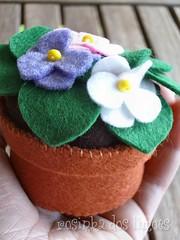 Flores na palma da mão