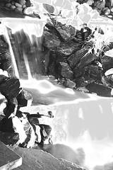 Waterfalls (creamycuzin_w07) Tags: andrew randall w07 flickr4