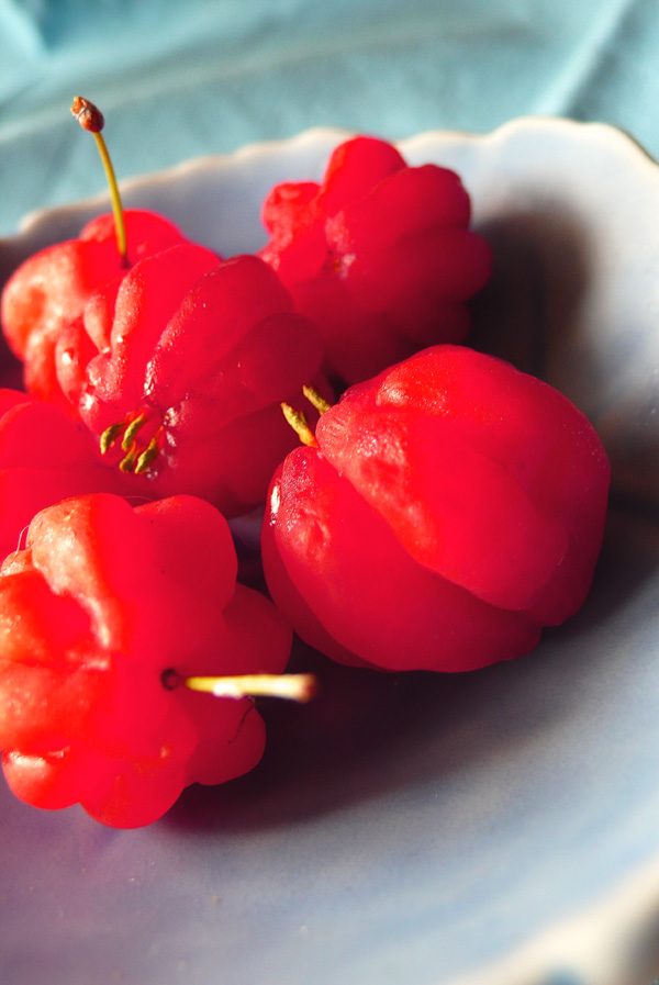 life is just a bowl of surinam cherries 1