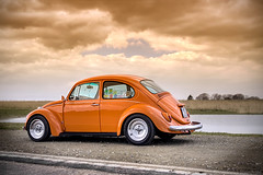 Low Orange 1 (Andreas Reinhold) Tags: orange photoshop bug beetle ps hdr type1 wolle mettmann photomatix loworange
