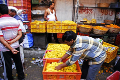 Petals, Toil and Business at Dadar's Phulgalli...