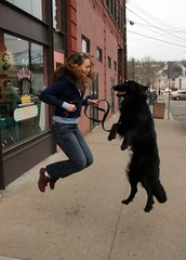 Laura & Zero (elston) Tags: dog laura jump jumping pittsburgh action sidewalk powerlines thestrip zero stripdistrict pamelas nonesuch pittsburgh033107 flickr:user=nonesuch