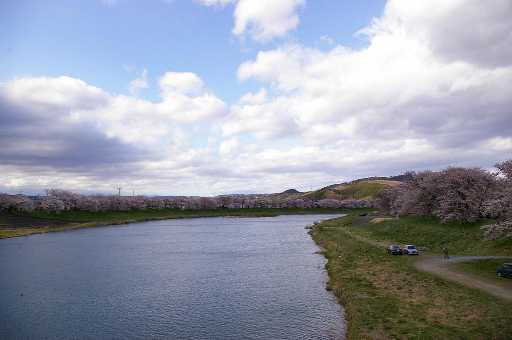 大河原之一目千本櫻
