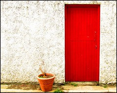 Red and white (Steve-h) Tags: door wood ireland red dublin white plant green dead wooden moss paint cement explore finepix fujifilm stucco steveh explore57 s9600 bestcapturesaoi elitegalleryaoi mygearandme mygearandmepremium mygearandmebronze mygearandmesilver mygearandmegold mygearandmeplatinum mygearandmediamond