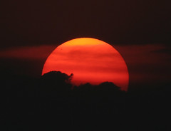 Rode bol... (Truus) Tags: sunset beautiful bol soe rode naturesfinest prachtig anawesomeshot favemegroup5 flickrphotoaward