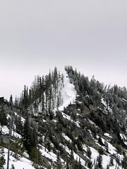7100' plus highpoint along Four Mile Ridge