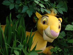 Cudley (Mr Grimesdale) Tags: toy lion softtoy mrgrimsdale stevewallace 15challengeswinner photofaceoffwinner pfogold mrgrimesdale grimesdale