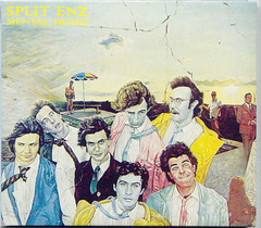 Split Enz (Ron-Kane) Tags: cd nz 1975 timfinn progressiverock ultimatecollection splitenz mushroomrecords philjudd mikechunn whitecloudrecords