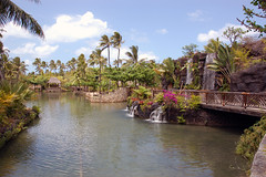 PolynesianCenter (2)