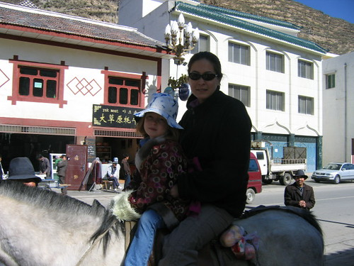horse_trekking